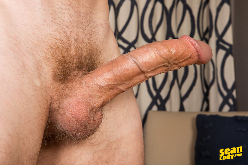Long and hard cock with veins along the shaft